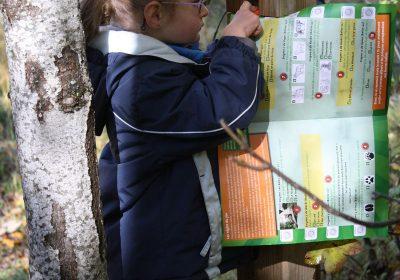 Children's orienteering circuit